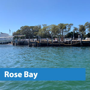 rose bay water taxis